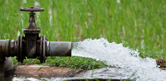 The Role of Commercial Agriculture in Tackling Water Scarcity